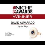 NICHE AWARDS 2016